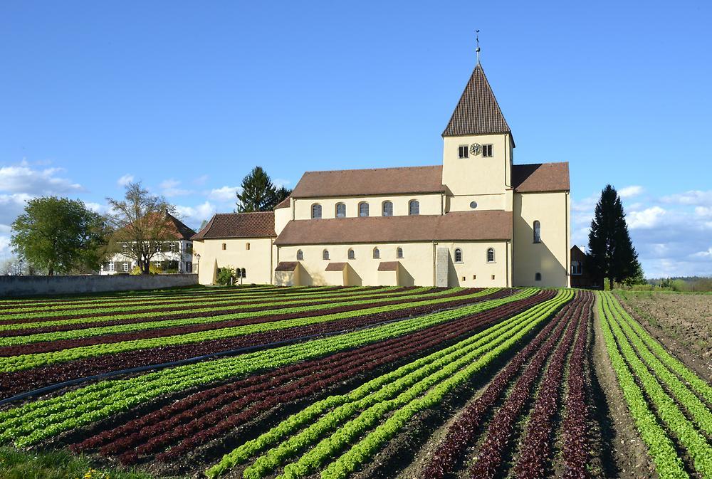 Insel-Reichenau-St